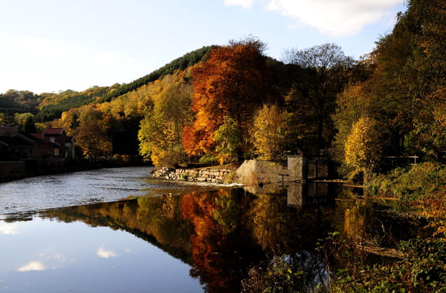Déversoir sur la Vesdre en automne.