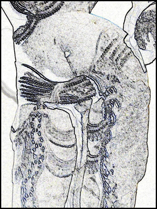 Divinité féminine du rajasthan