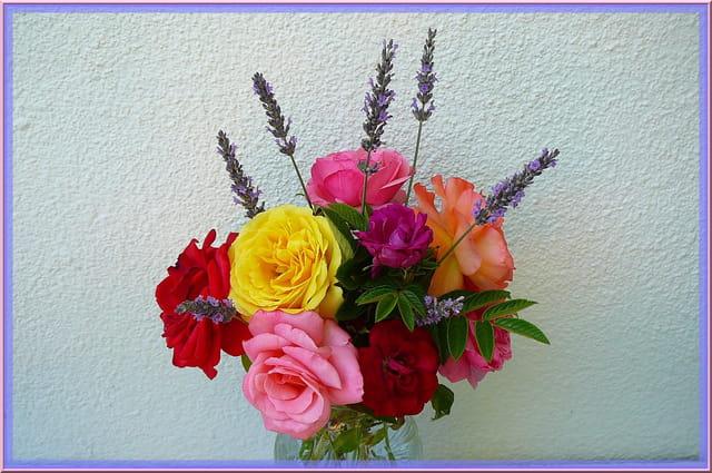 Doux parfum de roses et de lavande