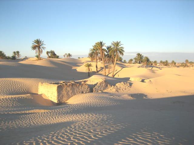Douz dans le désert