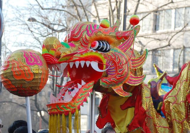 Dragon chinois par claudia meyer sur l 39 internaute - Photo de dragon chinois ...