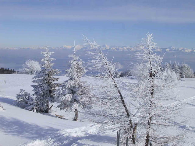 Du Jura aux Alpes