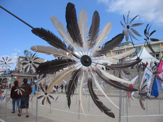 Du vent dans les plumes