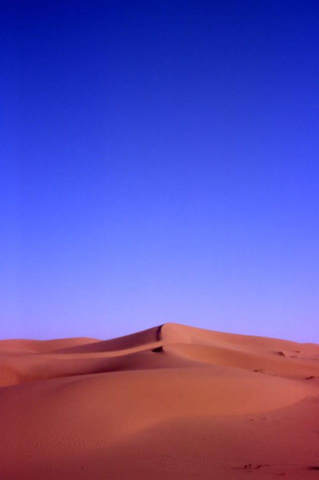 Dunes au matin