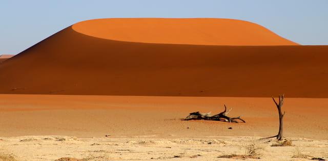 Dunes de velours ...