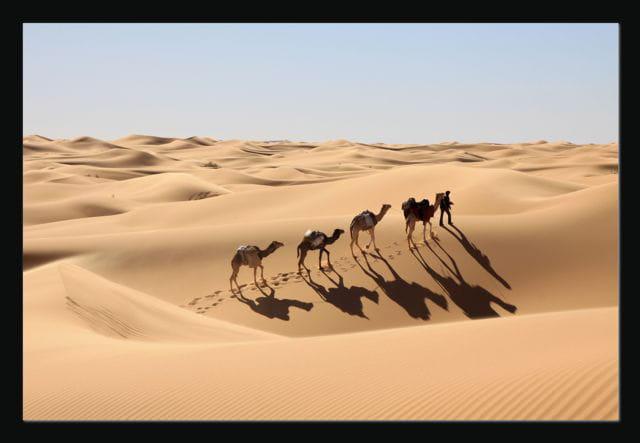 Dunes du Gourara 1