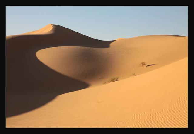 Dunes du Gourara 4
