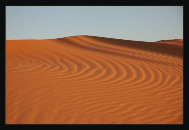 Dunes du Gourara 5