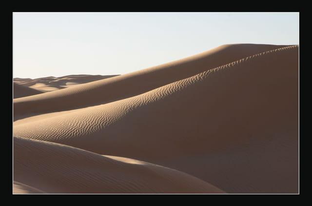 Dunes du Gourara 6