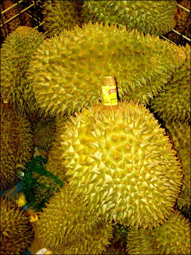 Durians asiatiques