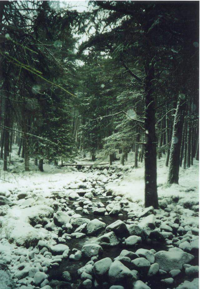 Ecosse en hiver