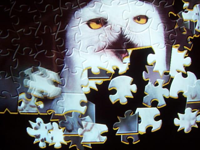 �cran de veille puzzle