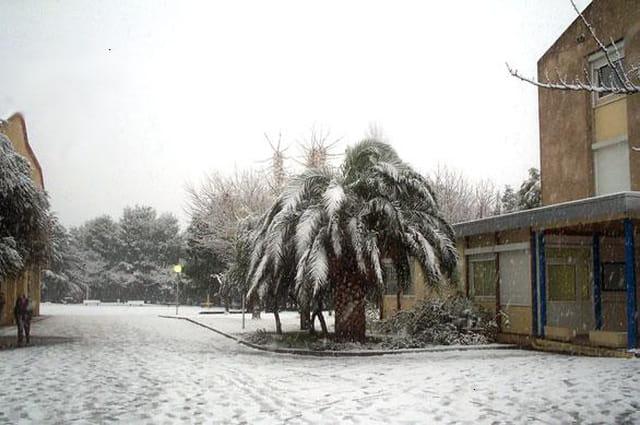 Elne sous la neige