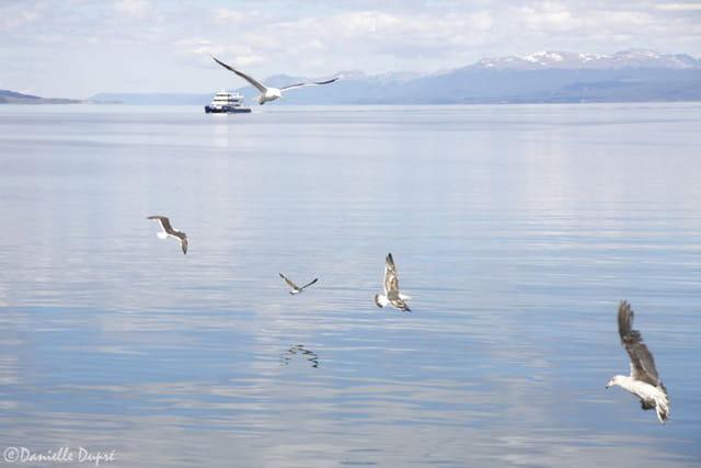 En baie d'Ushuaia