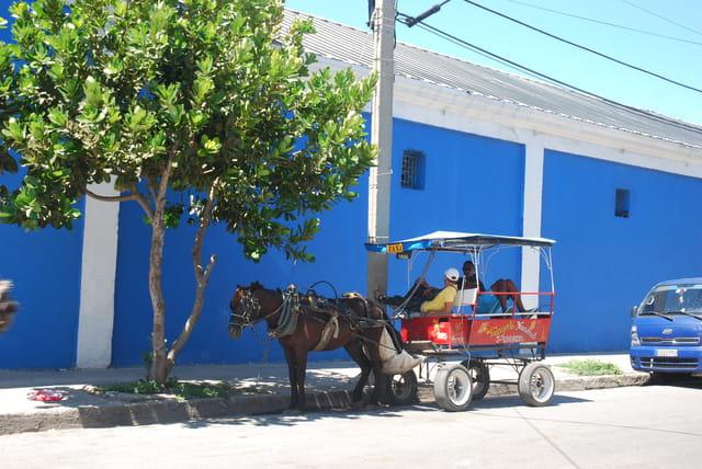 en calèche à Cienfuegos