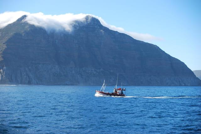 En route pour l'île aux phoques, île Dluker