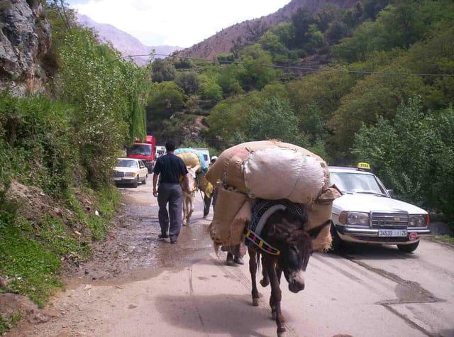 En route vers setti fatma
