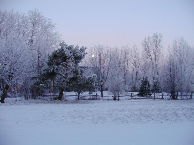 Encore l'hiver