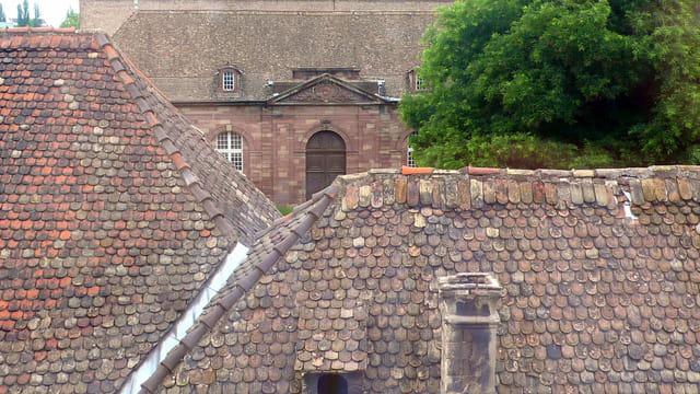 Entre les toits