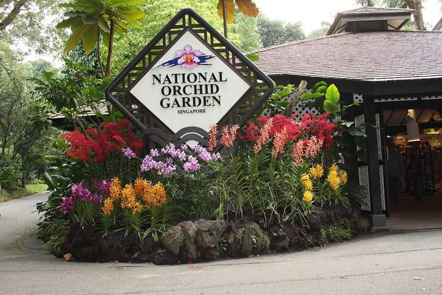 Entr e du jardin botanique de singapour par genevieve for Bd du jardin botanique