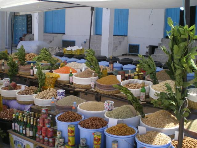 �pices Djerba 06/2008