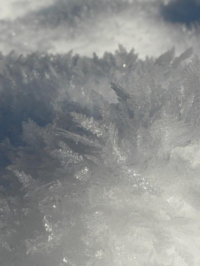 �pis de neige
