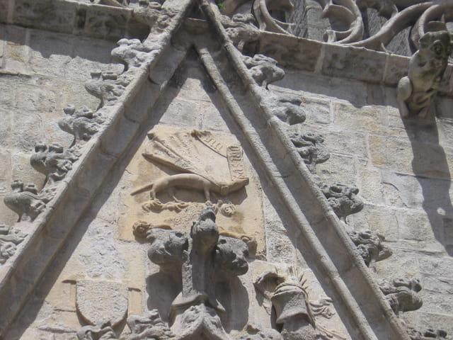 Ermine sur la cathédrale saint Corentin de Quimper