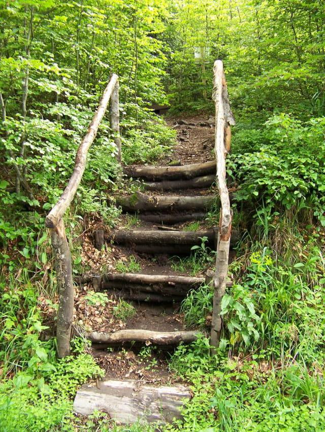 Escalier au détour du chemin