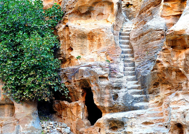 Escalier dans le siq el barid petite petra par alice for Escalier dans le vide