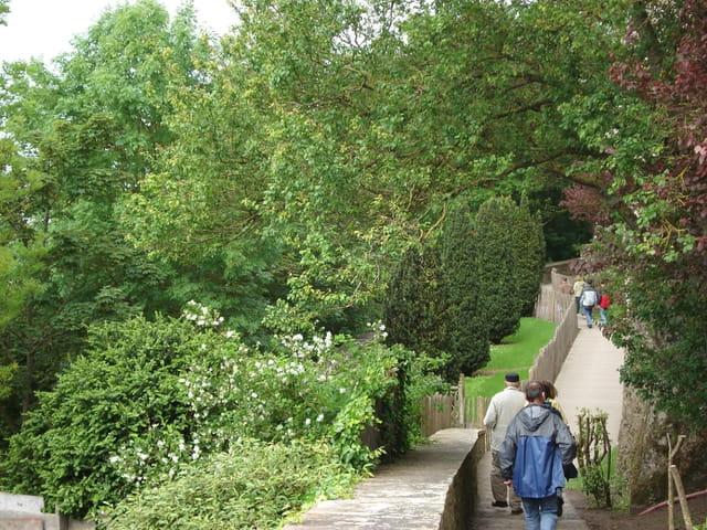 Escalier de Mont St Michel