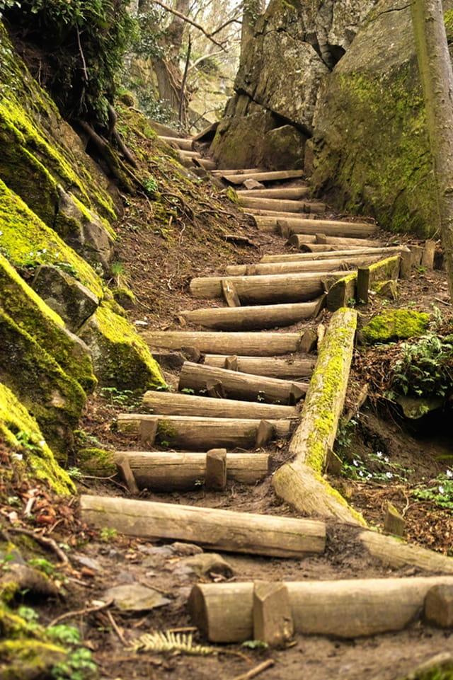 Escalier de promenade