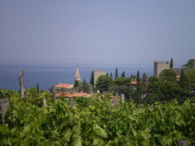 Escapade à Piran, en Istrie slovène