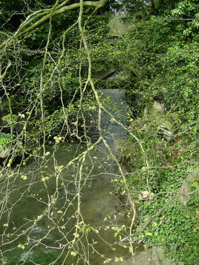 Et coule une rivière