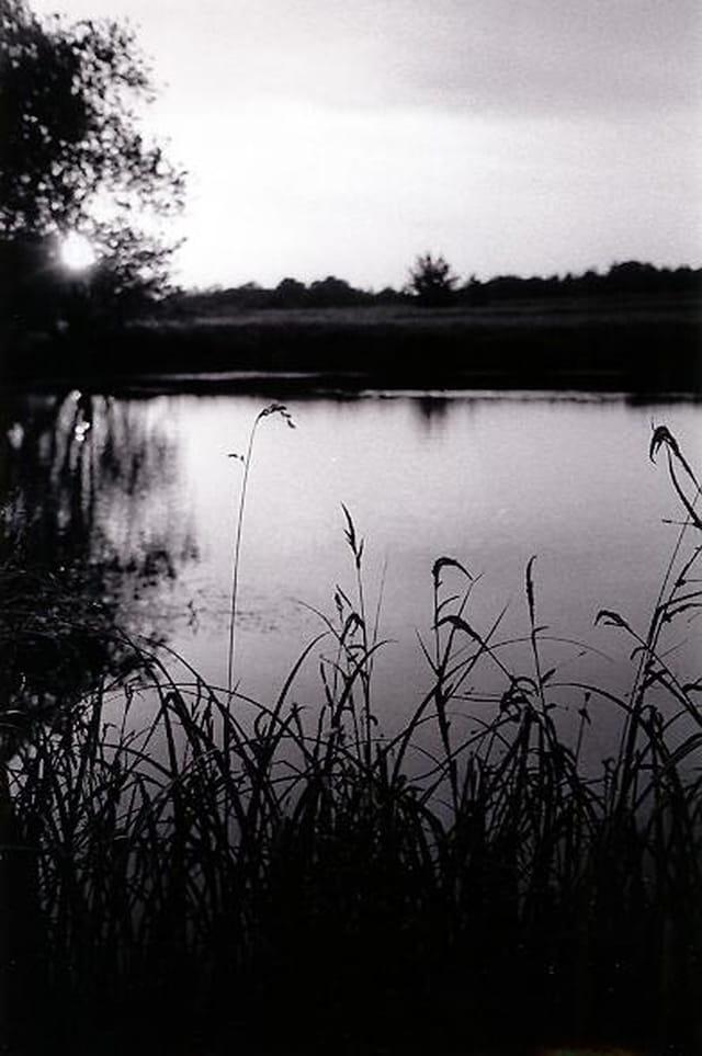 Etang - juin 2001