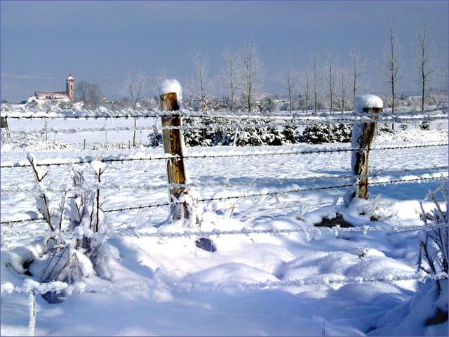 Féerie hivernale