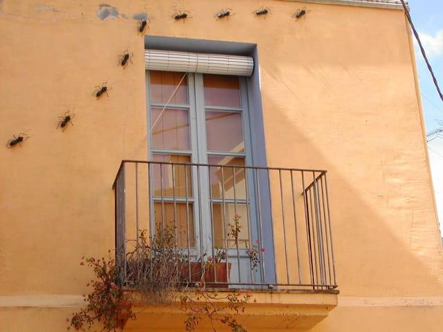 Fenêtre espagnole