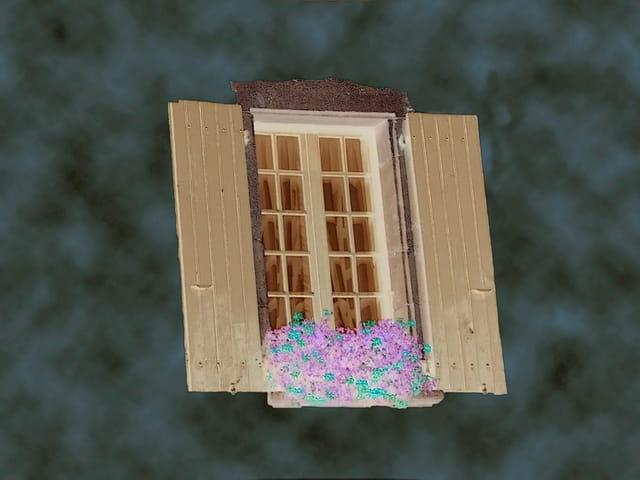 Fenêtre secrète