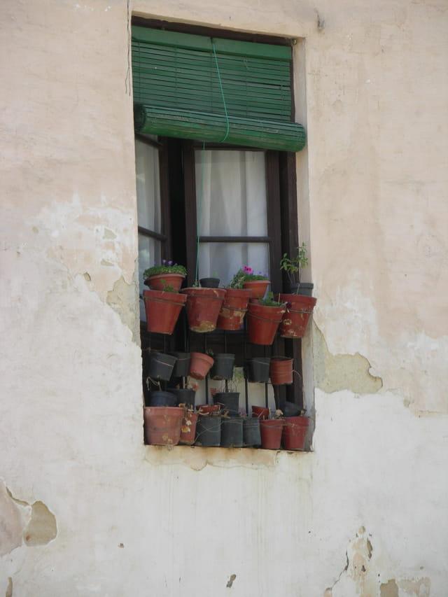 Fenêtre typique