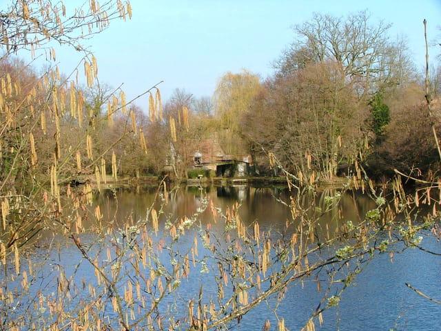 Ferme au bord d'un étang