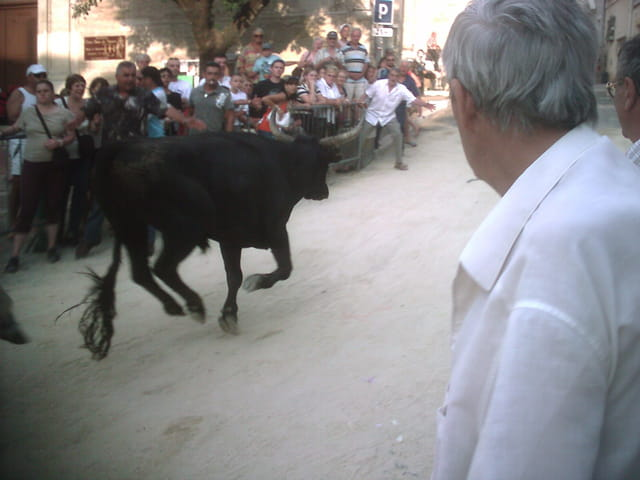 Fete à Vauvert 2007