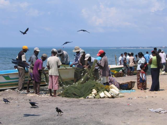 Filet de pêcheurs