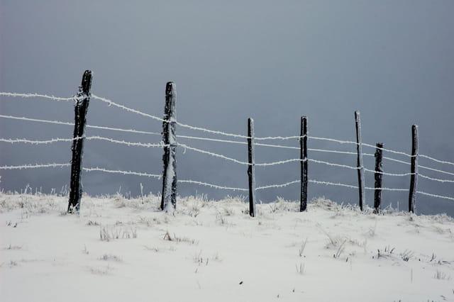 Fils barbelés gelés en montagne