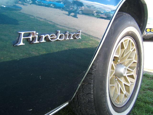 Firebird detail's