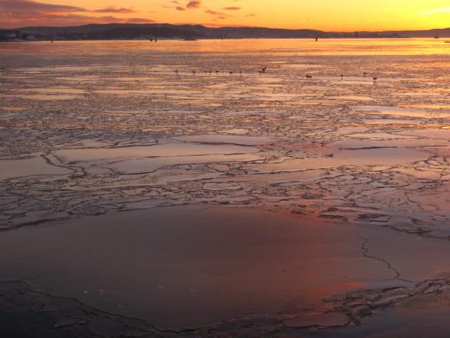 Fjord gelé