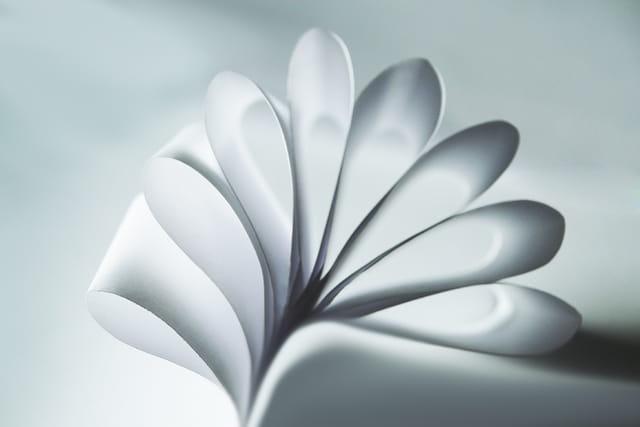Fleur de lumière