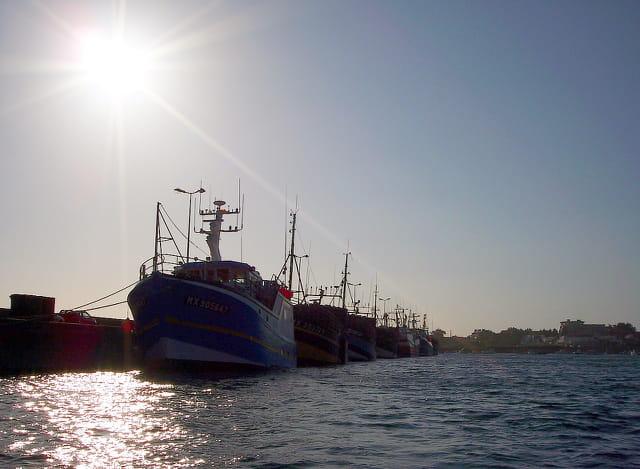 Flottille à quai.