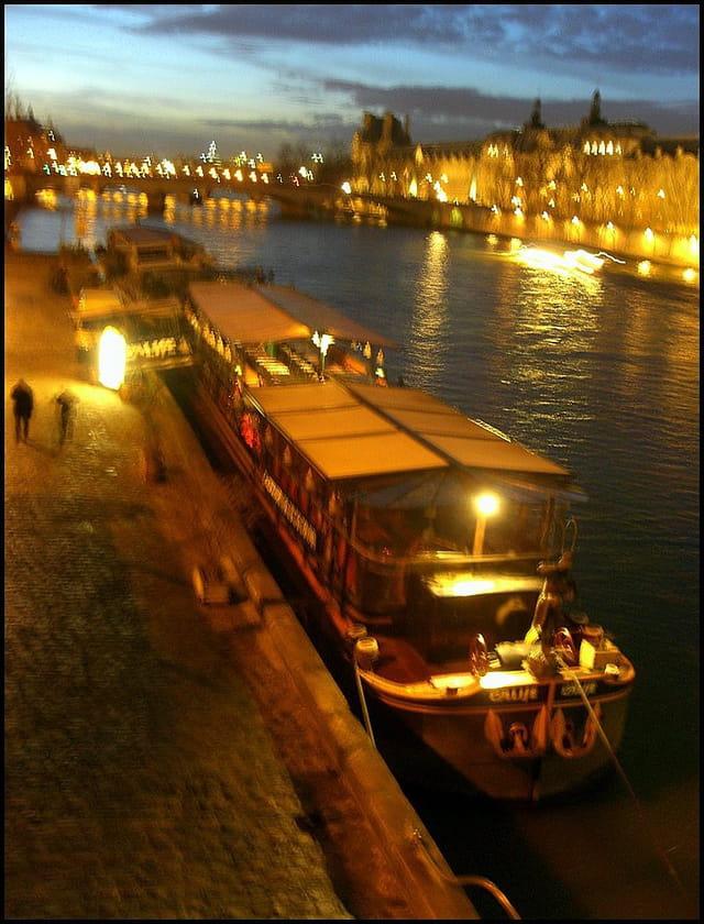 Flou nocturne sur la Seine