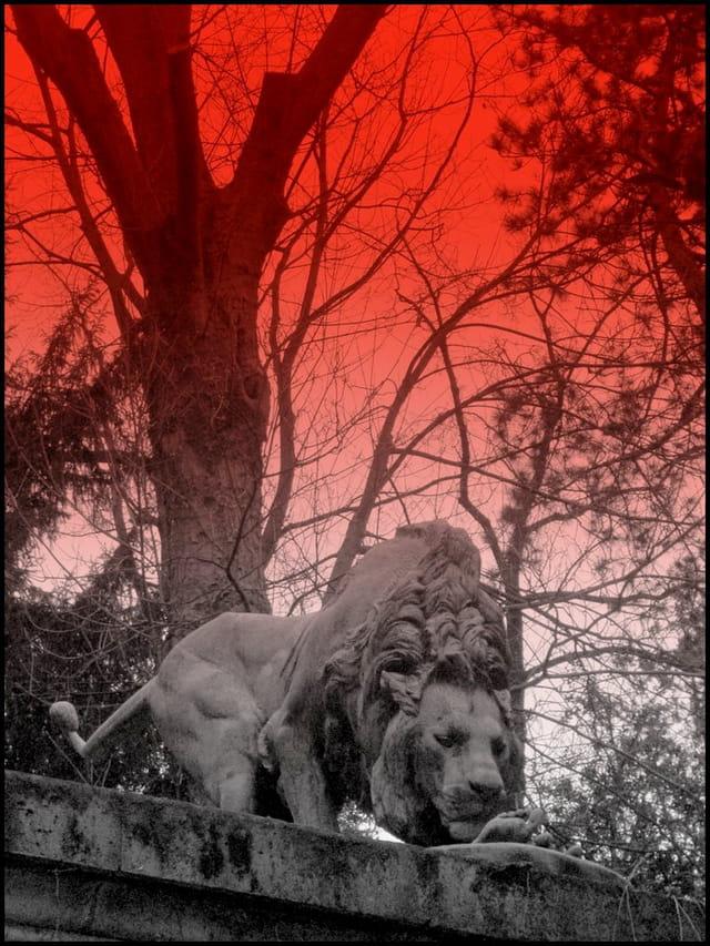 Fontaine aux lions