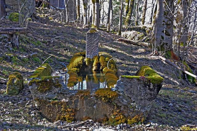 Fontaine de Bon Mollard