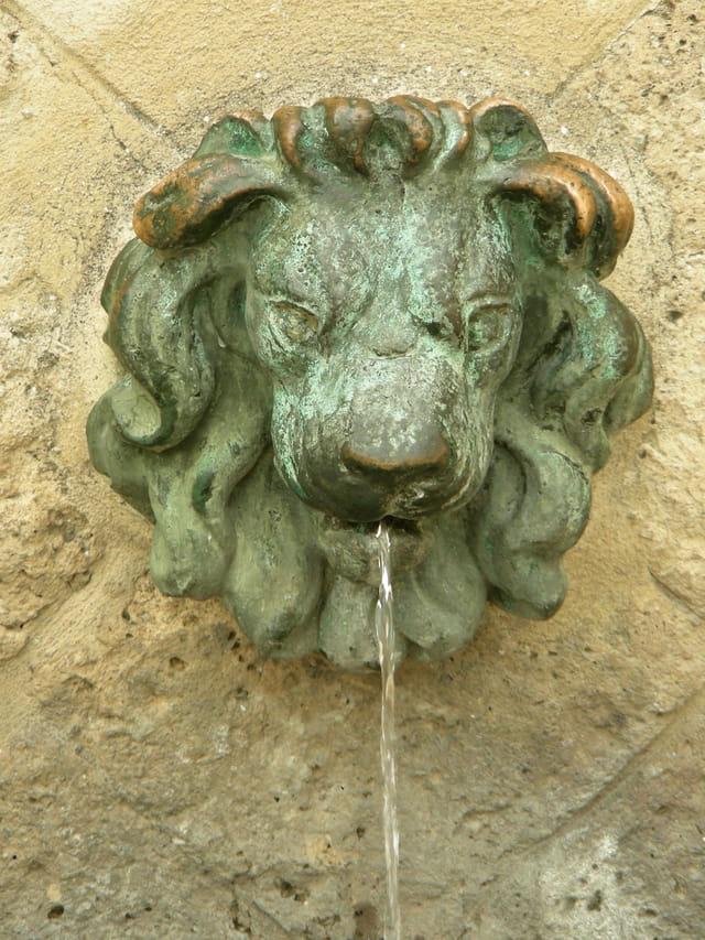 Fontaine je bois de ton eau
